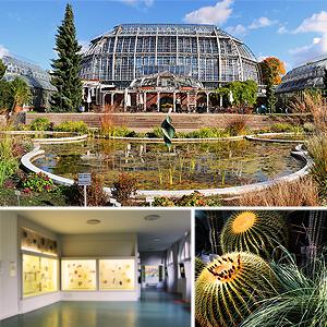 Botanischer Garten und Botanisches Museum Berlim-Dahlem
